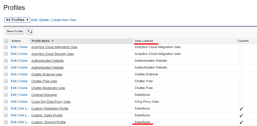 All user licenses in Salesforce
